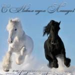 Картинки лошади на Новый год 2014