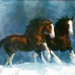 Картинки с лошадьми на новый год 2014. Сайт NovyjGod.com