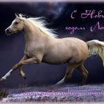 символ 2014 года лошадь картинки