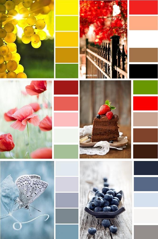Подбор правильного цвета для интерьера