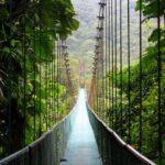 Подвесной мост через каньон