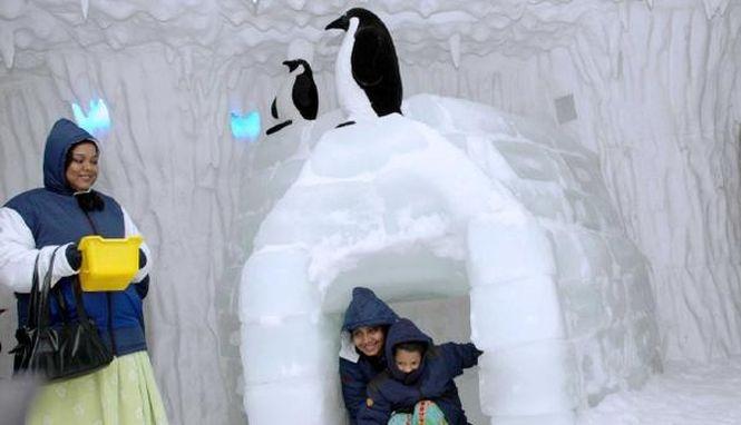 Пещера пингвинов