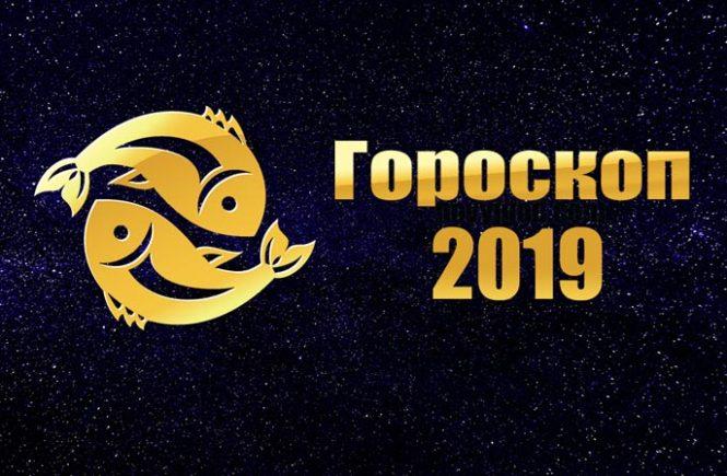 Гороскоп знака Телец на 2019 год Собаки, Новый год - 2019 в 2019 году