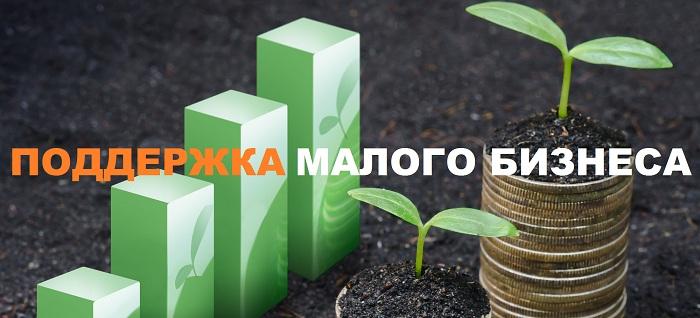 podderzhka-malogo-biznesa-2019-1