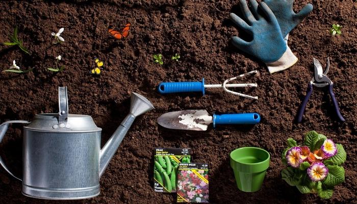 Лунный посевной календарь для огородника на апрель 2019 года
