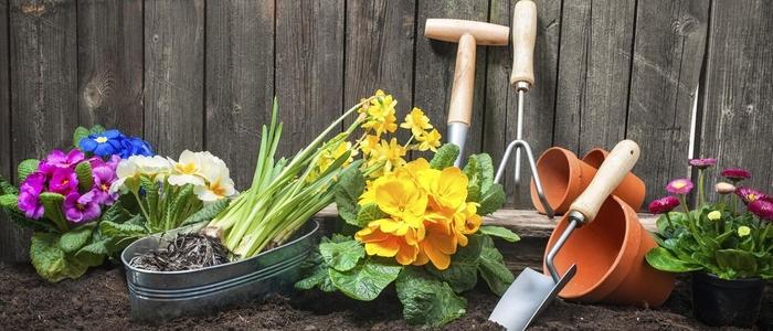 Лунный календарь садовода и огородника на апрель 2019 года
